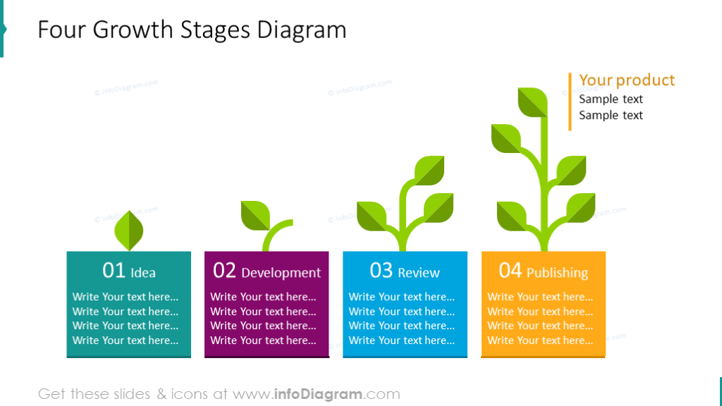 4 stages flat growth diagram