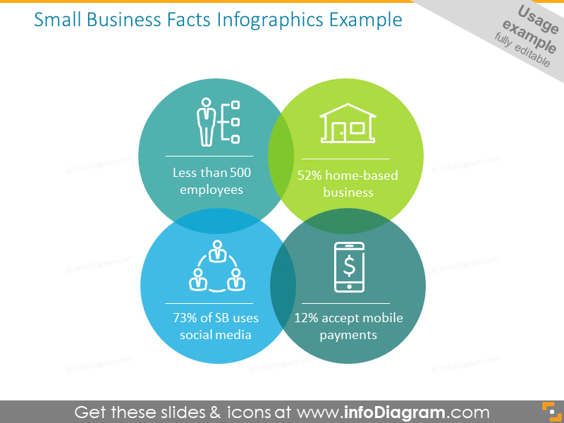 Small Business Facts Infographics Example