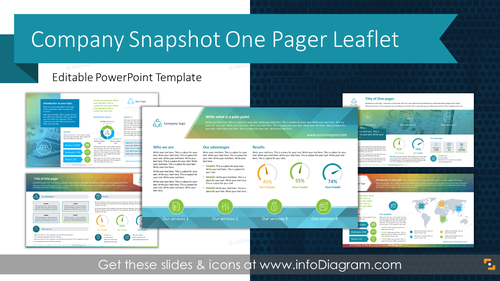 Company Snapshot One Pager Leaflet (PowerPoint Template)
