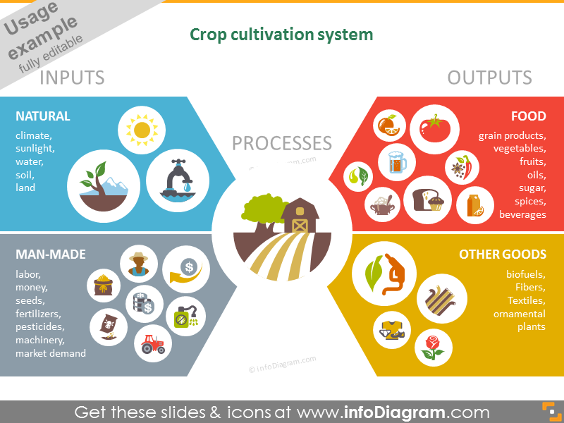 Crop cultivation system