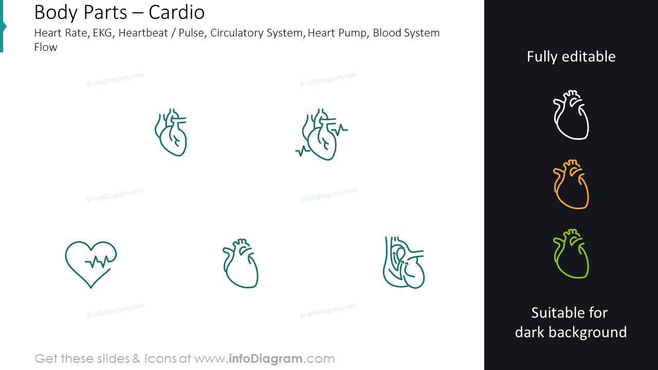 Cardio icons: heart rate, EKG, heartbeat, pulse, circulatory system