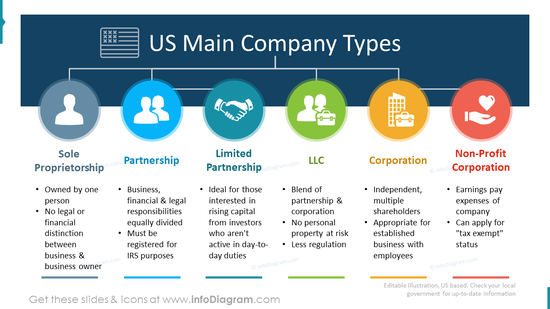 USA main company types flowchart