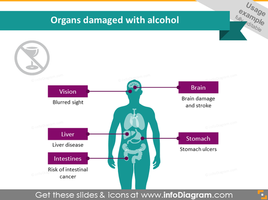 Alcohol Organs Damage Infographics