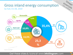 Gross inland energy consumption showed with round diagram and place for description