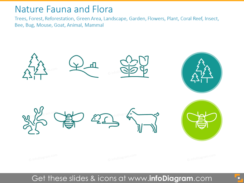 Nature Fauna and Flora