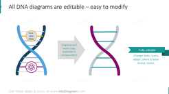 Example of editability DNA graphics