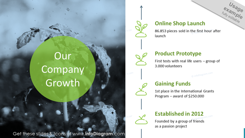 Vertical Company Growth History Timeline – 4 Stages with Establishment, Funds, Prototype and Launch
