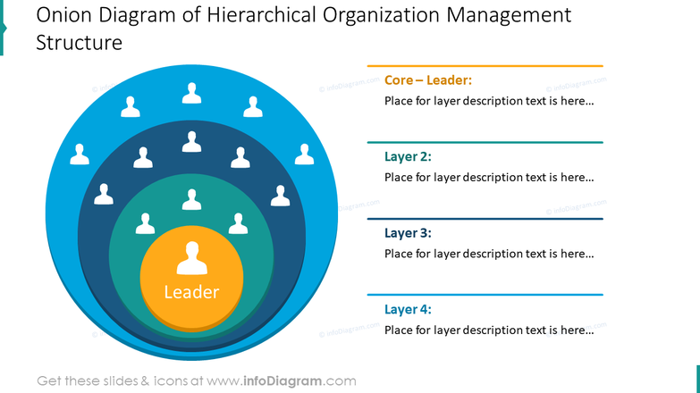 Onion diagram of hierarchical organization management structure