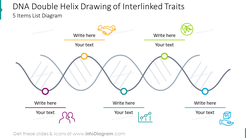 DNA double helix drawing of interlinked traits for five items