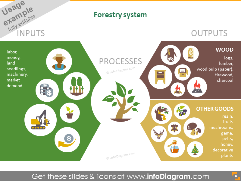 Forestry systems infographic