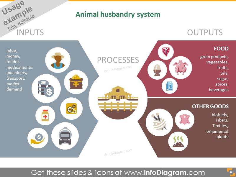 Animal husbandry system