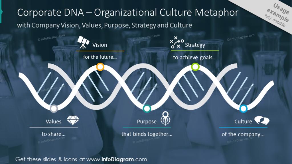 Organizational culture metaphor illustrated with DNA diagram