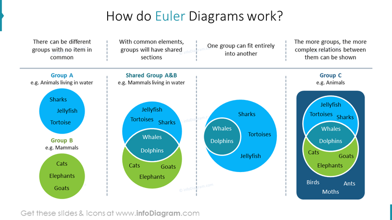 How do Euler Diagrams work