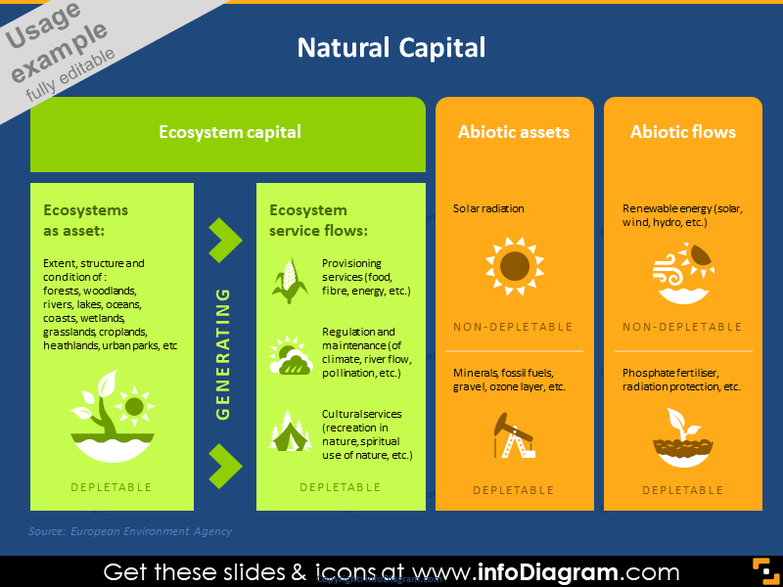 Natural Capital Graphic