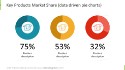 Main product sales overview: data-driven pie charts